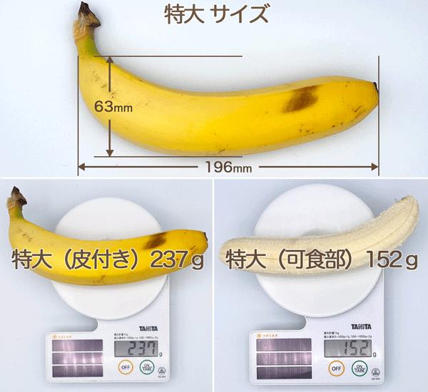 バナナ特大サイズ 縦63mm 横196mm 重量 皮付き237g 可食部152g
